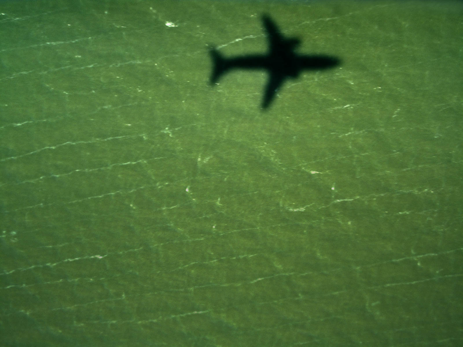 From the Air-4.jpg